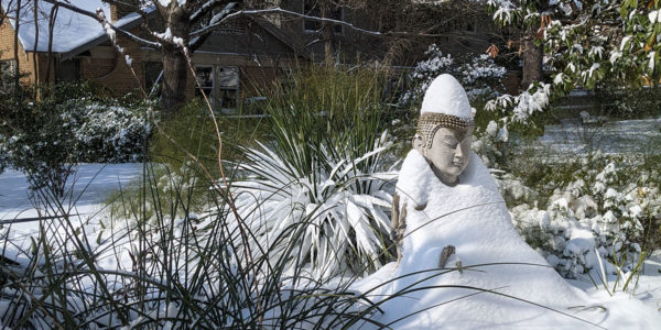 Winter Storms Challenge Texas Zen Centers|Sangha News